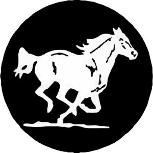 Wild Mustang Tire Cover