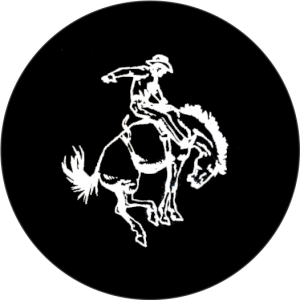 Bucking Horse Tire Cover