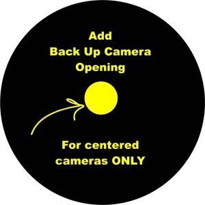 camera hole option