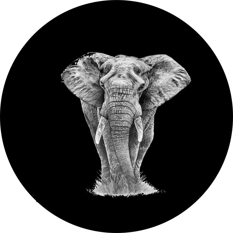 Magnificent Elephant Tire Cover Image