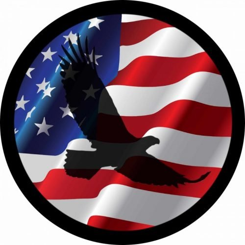 Eagle shadow on flag Tire Cover Image