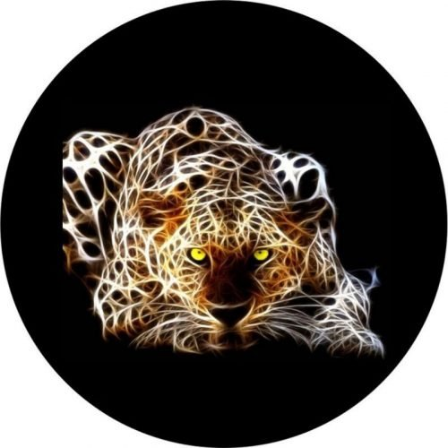 Electric Cat Tire Cover Image